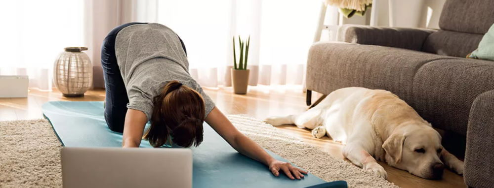 Йога дома онлайн занятия